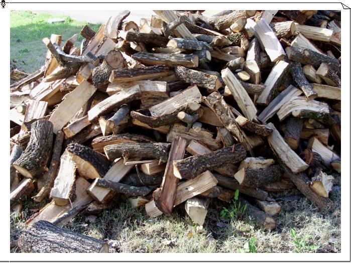 Lagna da ardere terni vendita di legna da ardere e vendita for Legna da ardere prezzi